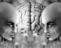 мозг и два лица