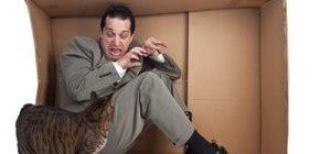 мужчина боится кошку