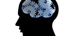 мыслительные процессы человека