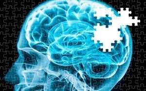головной мозг из пазлов